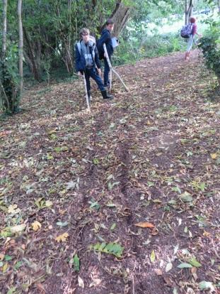 Making trails