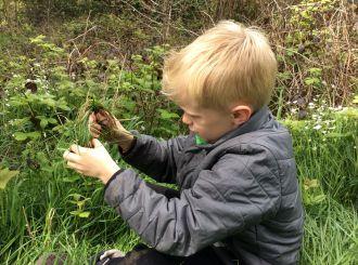 Weaving a Grass Nest